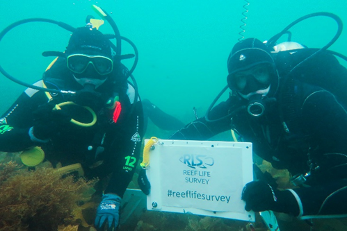 Ember Corpuz and Chelsea Haebich RLS volunteer divers. Photo by Jamie Hicks